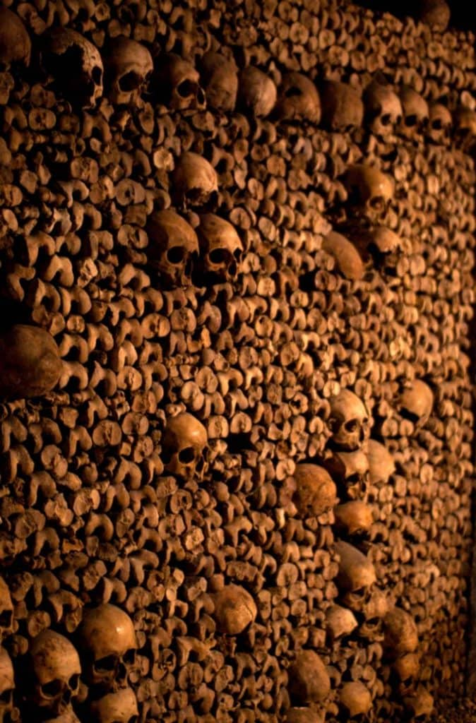 wall of skeletons