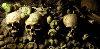 Dark secrets in the City of Love: The Catacombs of Paris