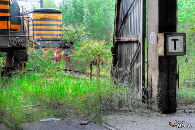 Cemetery of abandoned trains