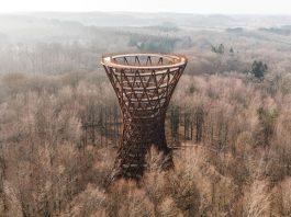 Camp Adventure Forest Tower in Denmark