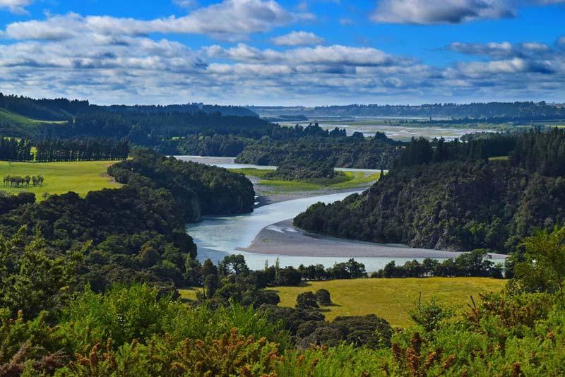 The Tree Church Of Ohaupo, New Zealand